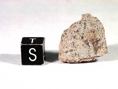 Метеорит Acfer 091