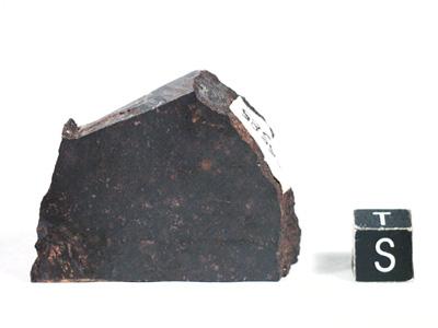 Метеорит Barratta
