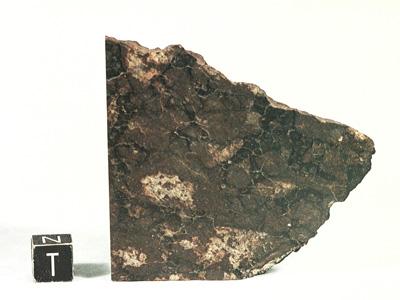 Метеорит Beeler