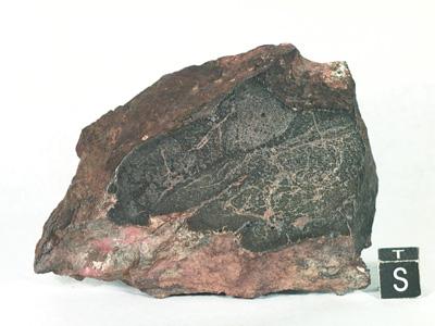 Метеорит Chico