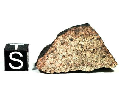 Метеорит La Criolla