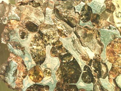 Метеорит Палласово железо (Красноярск)