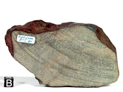 Метеорит Ransom