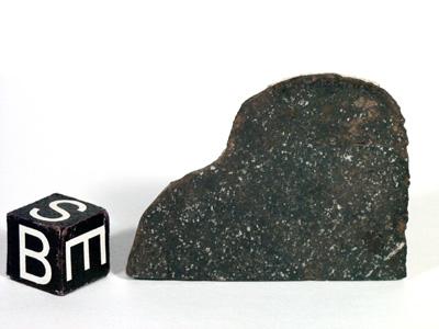 Метеорит Roosevelt