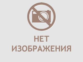 Метеорит Жиганск