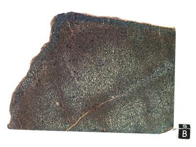 Метеорит Ashmore