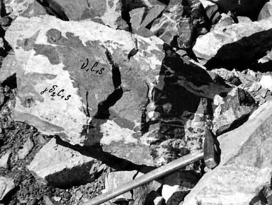 программа учебной полевой практики по общей геологии: