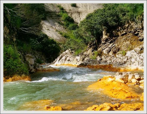 В том месте, где река Карымская впадает в Тихий океан в год извержения намыло большую желтую косу, многие животные были недовольны.