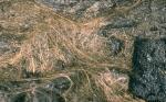 Сотни нитей волос Пеле, скручивающихся на поверхности лавового потока. Вулкан Килауэа.