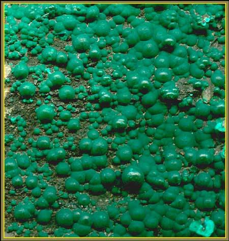 Сферолиты малахита на кварците. Ширина поля 5см. Джезказган, Ц.Казахстан.