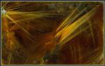 """""""Волосатик"""" -- включения игольчатых кристаллов рутила в кристалле кварца, 8см, Приполярный Урал. Фото / коллекция: Виктор Слётов."""